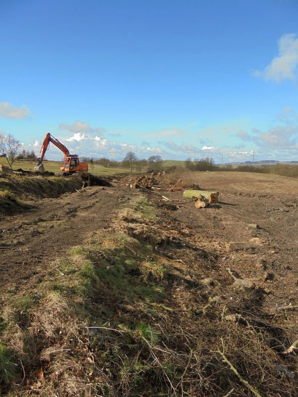 Land Clearing Service - Leinad Tree Service
