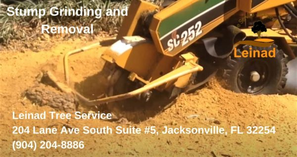 Stump Removal and Grinding - Leinad Tree Service